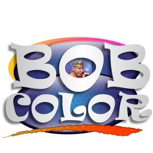 bc logo 14