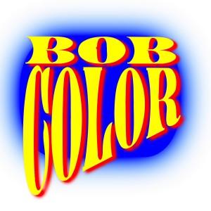 bc logo 24